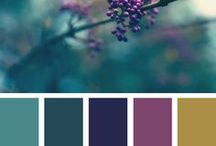 Color palettes that I like