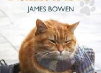 A Street Cat Named Bob!