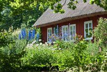 Bergtorp, trädgård