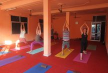 300 Hour Yoga Teacher Training in Rishikesh / Himalayan Yoga Retreat  is unique in its Yoga Teacher Training approach, as it offers students training in additional therapies. Swami Prakash believes in the holistic growth of the practitioner and therefore includes therapies and training in breathing techniques to aid in meditation, pressure points to remove emotional blockages, and ayurvedic knowledge. HYR's YTT students are trained in these disciplines as a part of their teacher training and can use this knowledge to further their practice.