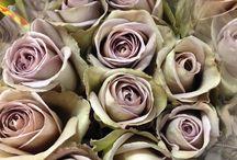 Wedding flowers to order
