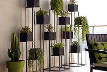 plantas, casos e jardins