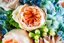 Garden & Flowers / Puutarha