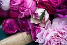 Pretty in Pink / by Tejae Floyde