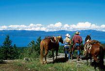 a travel guide - Flathead Lake