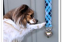 House Training / House training tips and tricks. Learn how to house train your dog.