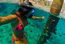 skryté pod vodou
