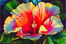 Art: Flowers & Plants