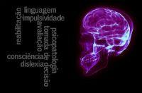 O Cérebro no Séc. XXI
