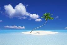 海 / 綺麗な海✨✨SURFE TRIP