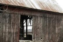 i love old barns / by Nikki Murgz