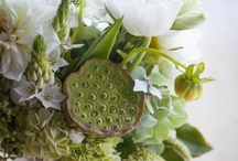Bouquets and posies / Beautiful wedding flower arrangements - for inspiration or just for looking at loveliness.
