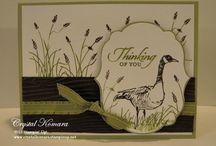 Wetlands / Birthday card