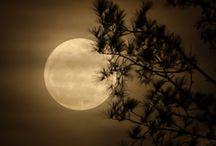 Moon = kuu