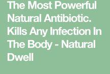 Antibiotic / Recipe