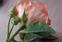 Ботаническая скульптура
