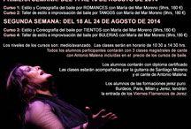 Cursos de Flamenco / Flamenco Courses