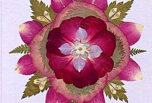 Dried Flowers Ideas