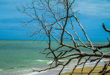 Corumbau - Bahia / Corumbau é considerada uma praia paradisíaca no sul da Bahia, com suas águas cristalinas, areias brancas é freqüentada por turistas que buscam a tranqüilidade do lugar.// Corumbau is considered a paradise beach in the south of Bahia, with its crystal clear waters, white sands is frequented by tourists who seek the tranquility of the place.