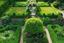 Green garden / by Zszywka PL