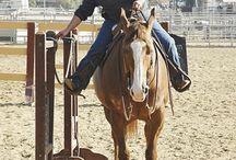 Hestetrening
