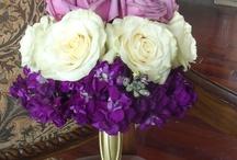 Zade & Merna: Beautiful Ombre Purple Florals / by Sara Mulder