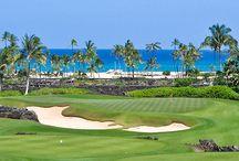 Golf Courses ~ / Golf Courses ~ Tropical Golf Courses ~ Greens ~ tee box ~