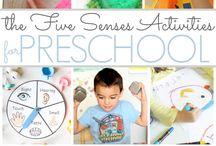Five Senses Theme