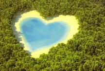 Heart - So special !