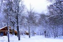 Basecamp in winter / Basecamp, Valle Las Trancas, Termas de Chillan, Nevados de Chillan, Chile
