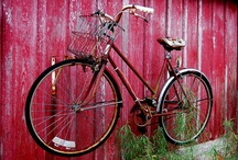 Bicycle Love / by Imagine Childhood