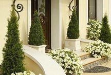 Flowers porch