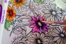 Coloring Book craze