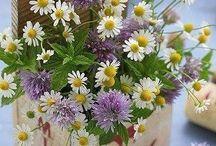 Kwiatowo i roślinnie