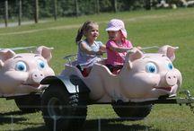 Piggy Pull Along