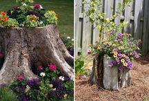 Tree stump gardens