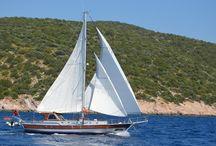COSH / #gulet, #yacht, #bluevoyage, #yachtcharter,  www.cnlyacht.com