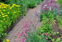 Newport Restoration Foundation Gardens  / Visit the beautiful gardens at Doris Duke's Rough Point, Whitehorne House and Prescott Farm in Rhode Island. / by Newport Restoration Foundation