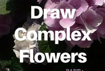 How to Draw fliwers