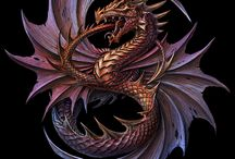 Dragon and Wyrms