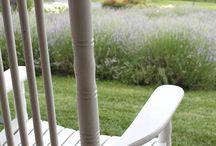 On the Farm / Photos of White Oak Lavender Farm