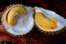 Durian Festival / Durian