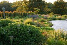 Landscape architecture / Gardens creative outdoor space landscape architecture landscape design