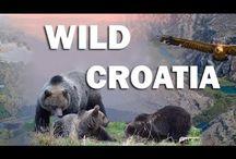 Wild Croatia