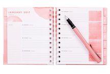 Diary/journals