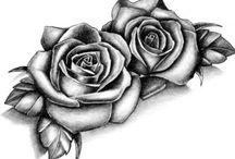 rose cicale