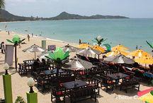 Beach Bars Koh Samui