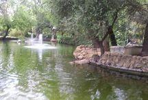 Sevilla, mi cuna natal / Descubrir al mundo los rincones, arquitectura, costumbres y arte de mi tierra