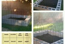 Garden bonanza