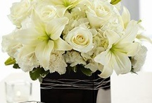Center piece ideas / by Andrea Brush